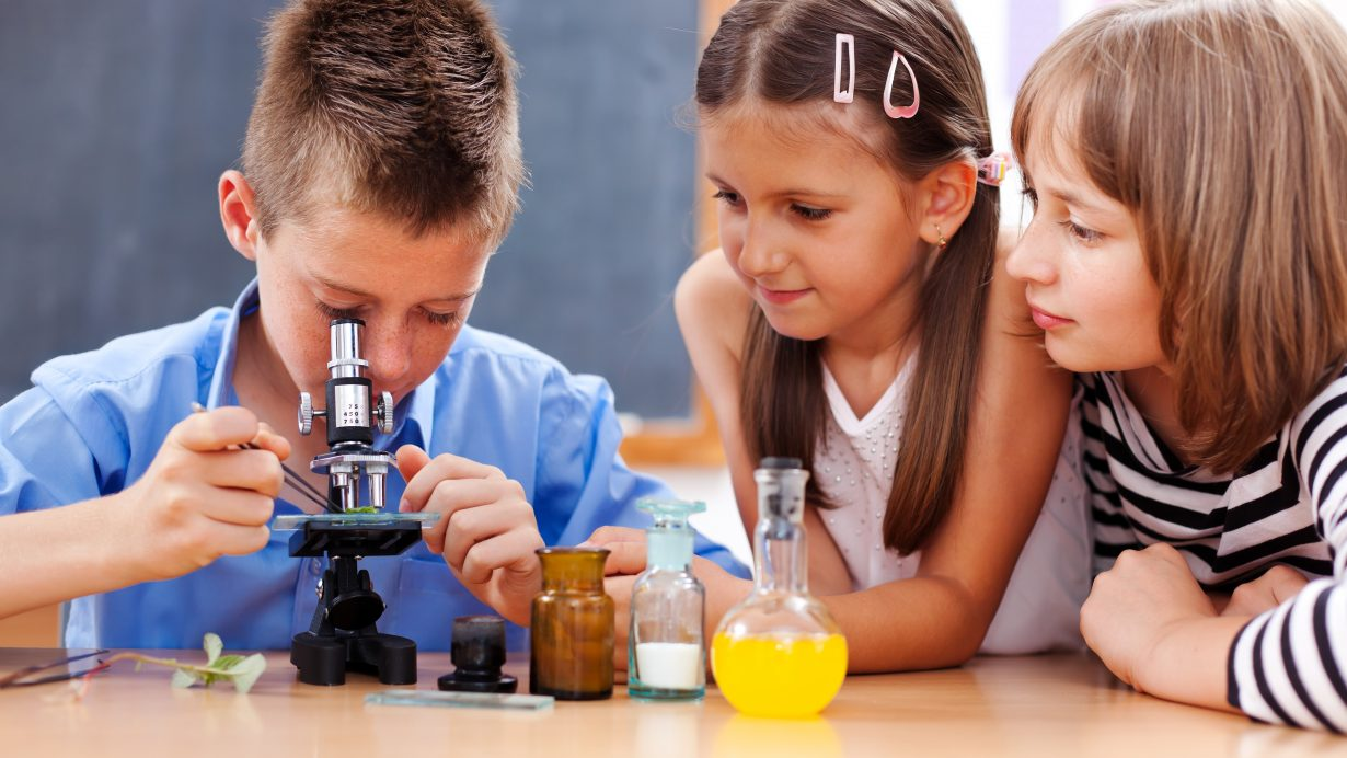 Stem Activities For Classrooms And Students Nature Watch